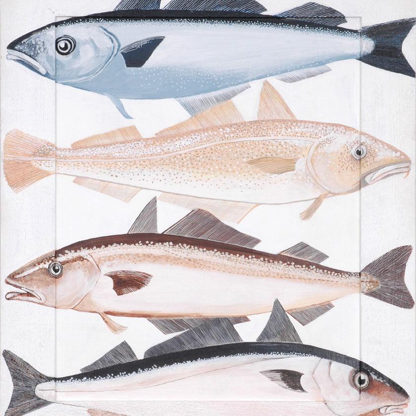 Noordzeevissen
