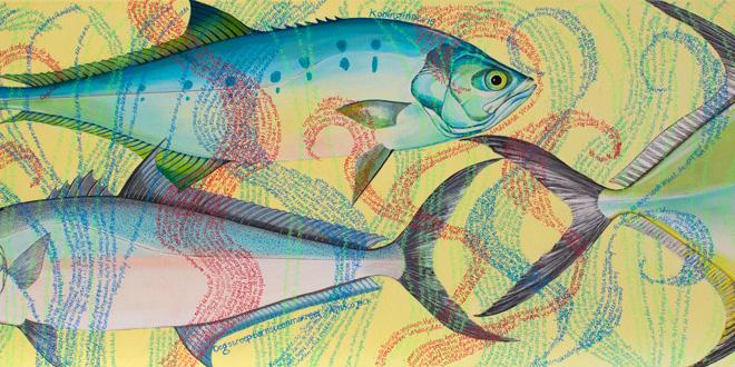 Verschillende Makrelen
