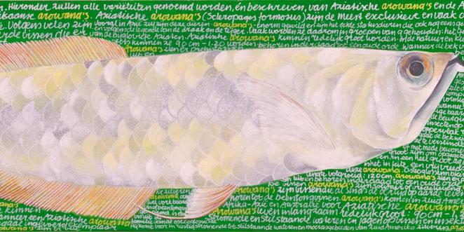 Witte Arowana
