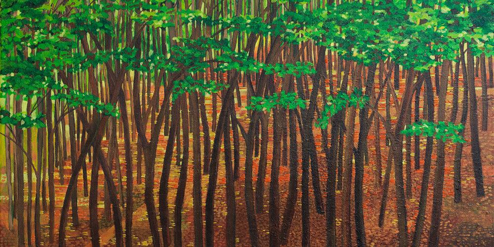 Zonlicht tussen Bomen